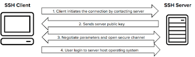 What is Secure Shell (SSH) ?