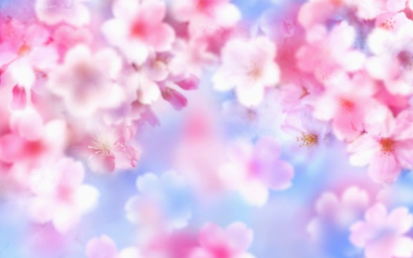 Cute Nature Wallpaper For Laptops - Nature Wallpapers for