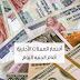 اسعار الدولار فى البنوك بعد تعويم الجنية تقرير كامل 2016