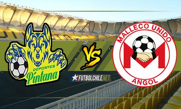 Deportes Pintana vs Malleco Unido