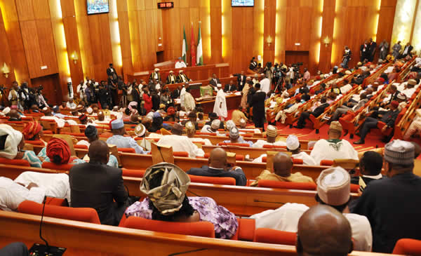 Nigeria senate at a plenary session
