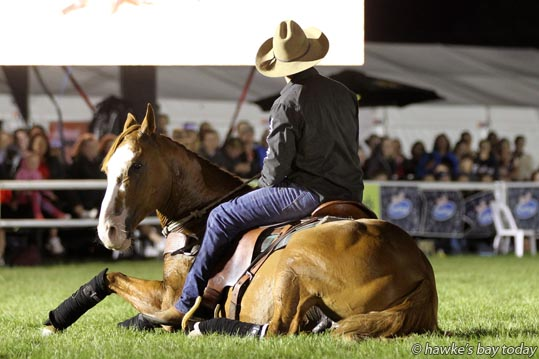 "Kingston lies down for Tumanako ""Tui"" Teka, part of the Friday Night Extravaganza, Horse of the Year, at the Hawke's Bay Showgrounds, Hastings. photograph"
