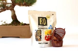 Fertilizing Bonsai