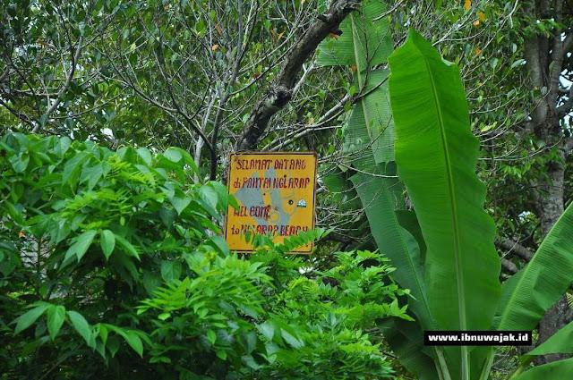 Petunjuk sampai Pantai Ngalarap