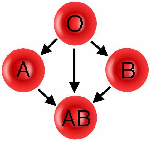 Grupo AB porque es tan difícil este tipo de sangre