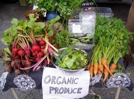 Organic Food Online Store Canada