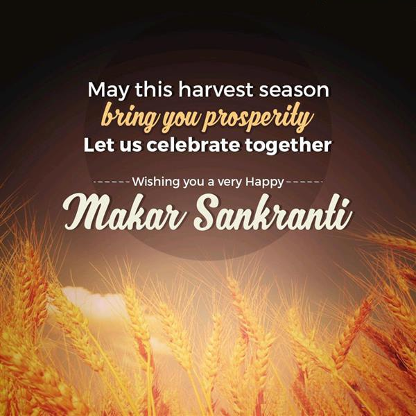 Makar Sankranti Wallpapers 2