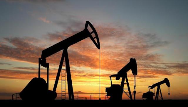 Opep revela datos contrarios a los emitidos por el Gobierno sobre producción petrolera