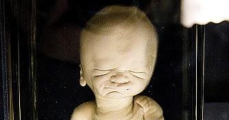 Genes de familia beb s muertos for Habitacion familiar en once