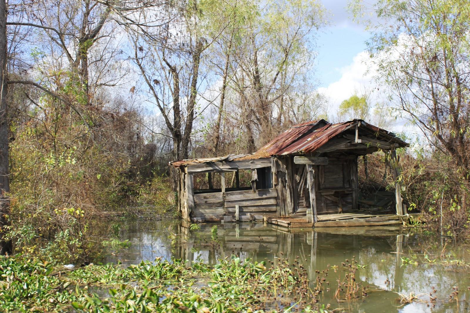 Tiny Cottages Louisiana Swamp Olivia Pontiff