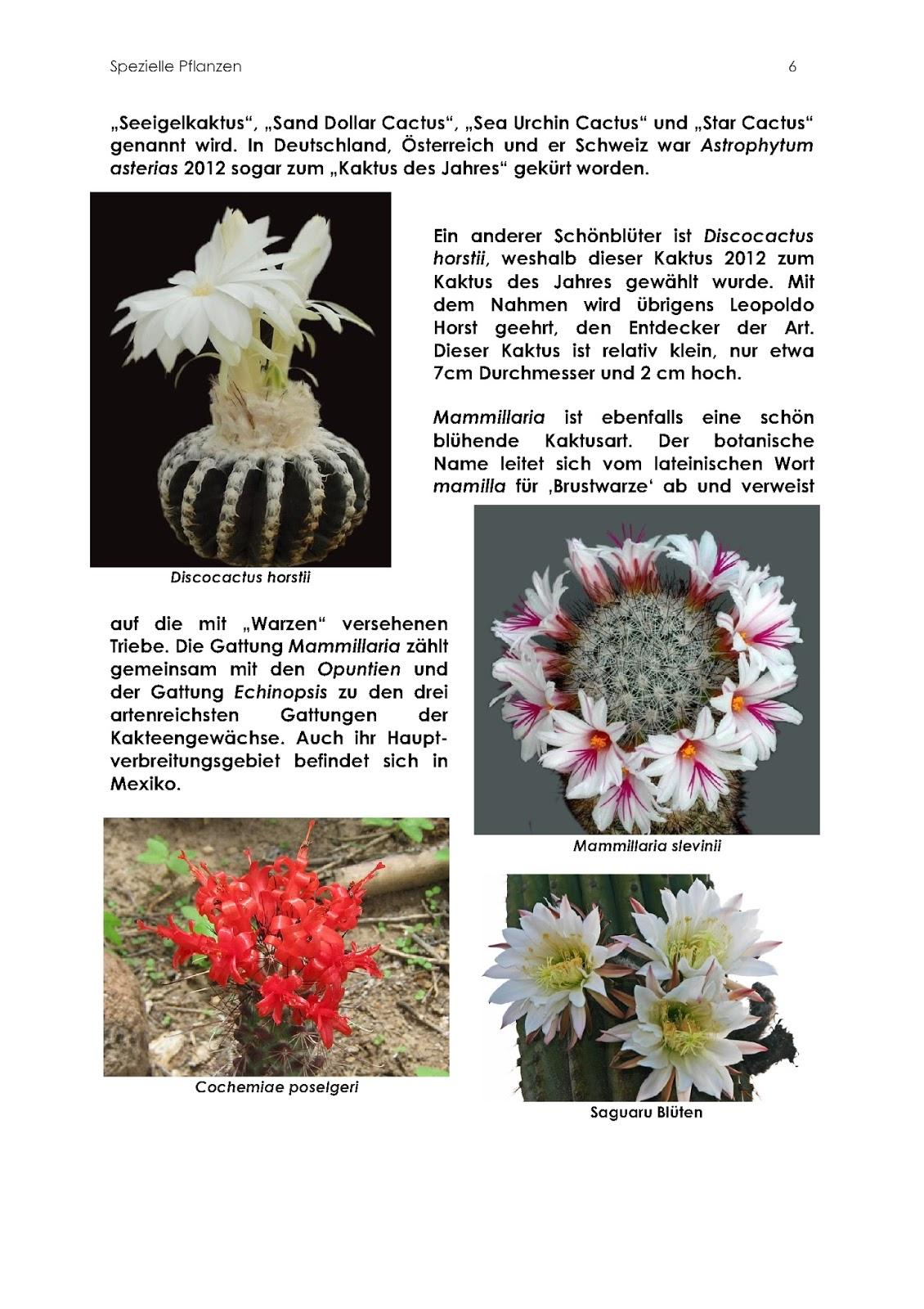 Niedlich Blühende Pflanze Anatomie Ideen - Zomerjassen