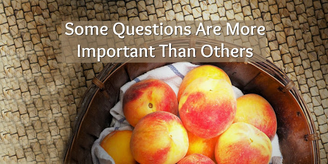What We Human Beings Must Do With Some of Our Questions...