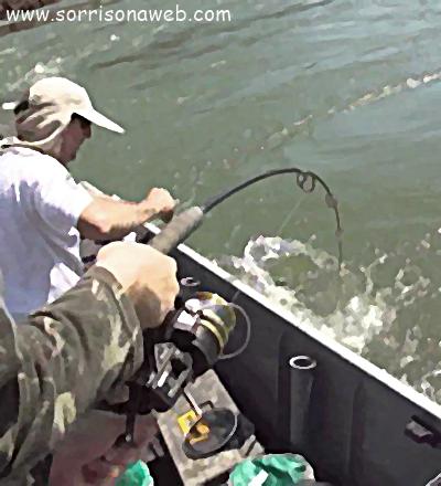 Pescaria - Sorriso na Web