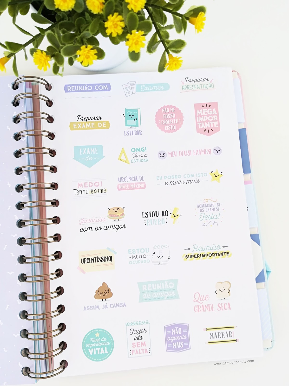 Agenda Mr. Wonderful- Game on, Beauty!