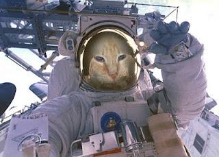 astronaut kitty - photo #35