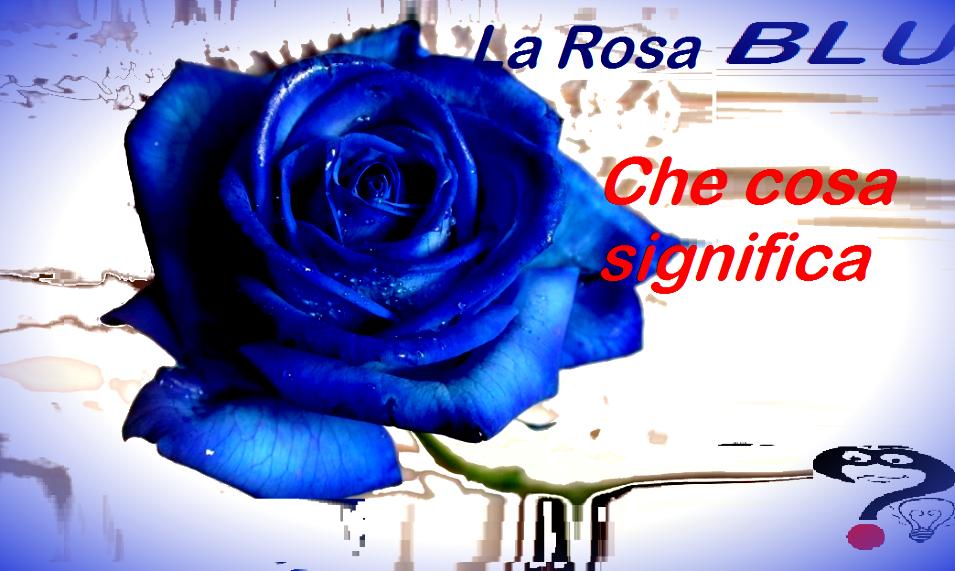 Regalare Una Rosa Blu Significato