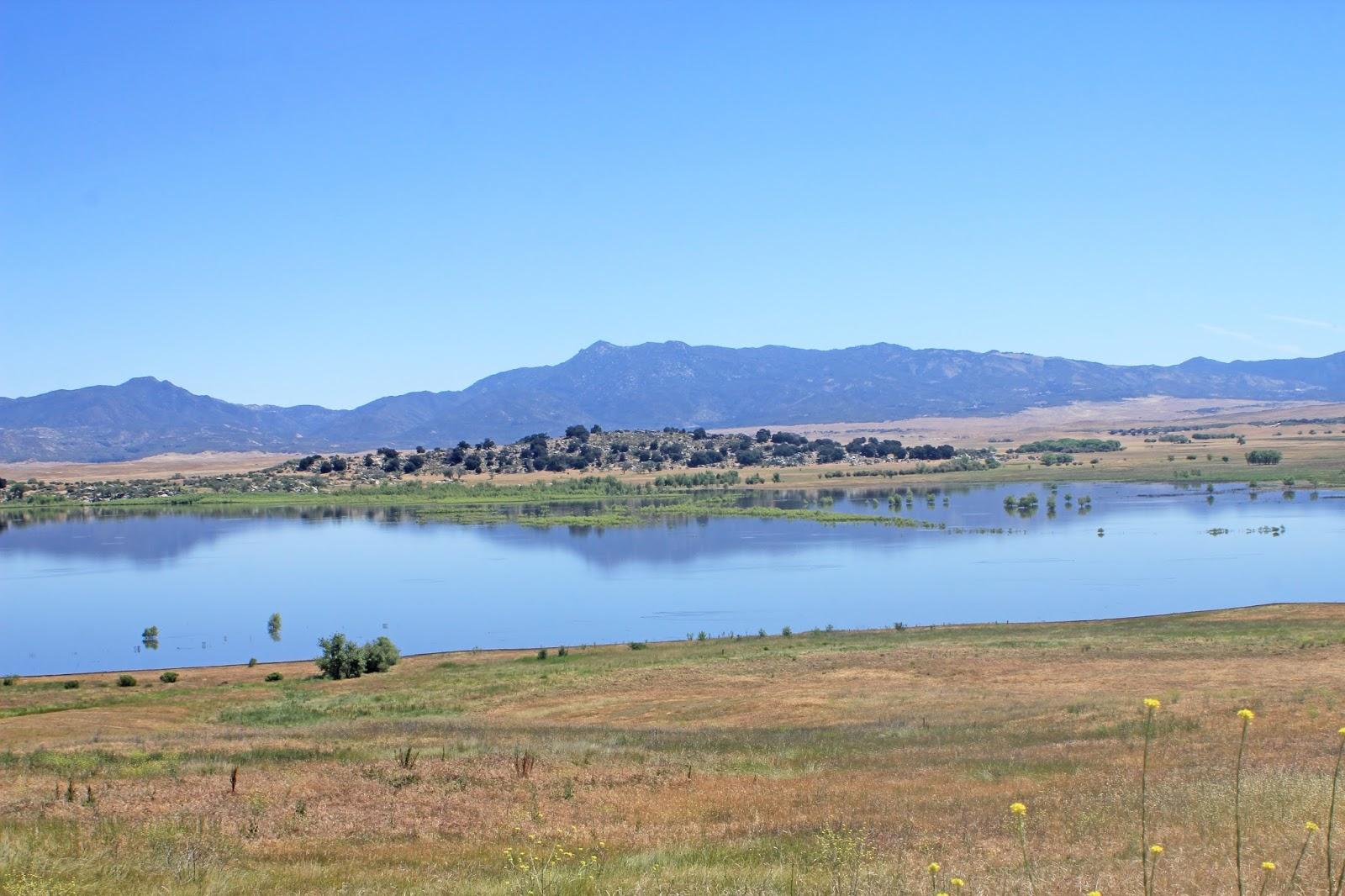 Western sojourns travels with camissonia lake henshaw for Lake henshaw fishing