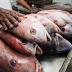 Alimentos típicos da Semana Santa têm variação de preço de até 70% em Fortaleza