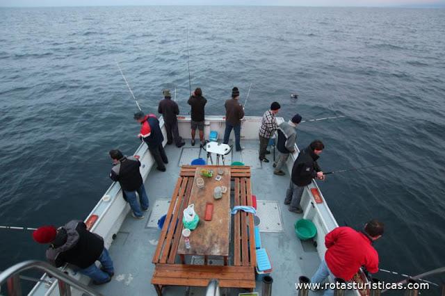 http://www.nodepesca.com.br/2018/12/pescaria-ou-socializacao.html