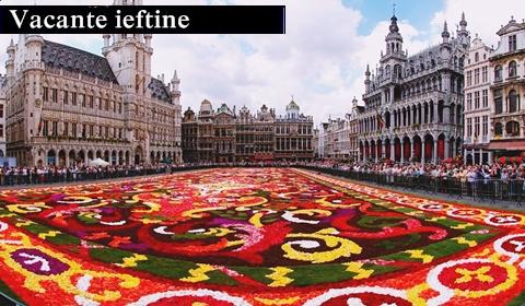 cat-costa-o-vacanta-in-Bruxelles