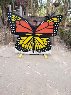 Monarch Grove Sanctuary at Pacific Grove California