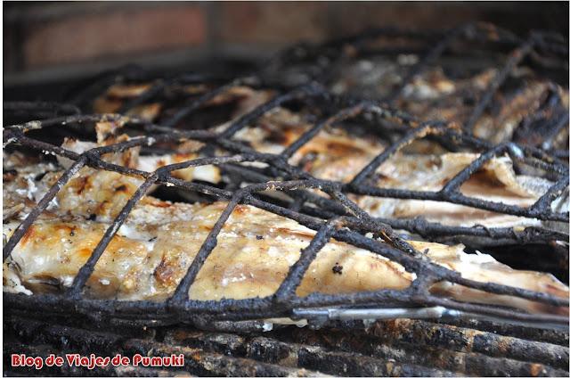 Pescado a la brasa cocinado en la calle en Getaria. Blog de Viajes, País Vasco.