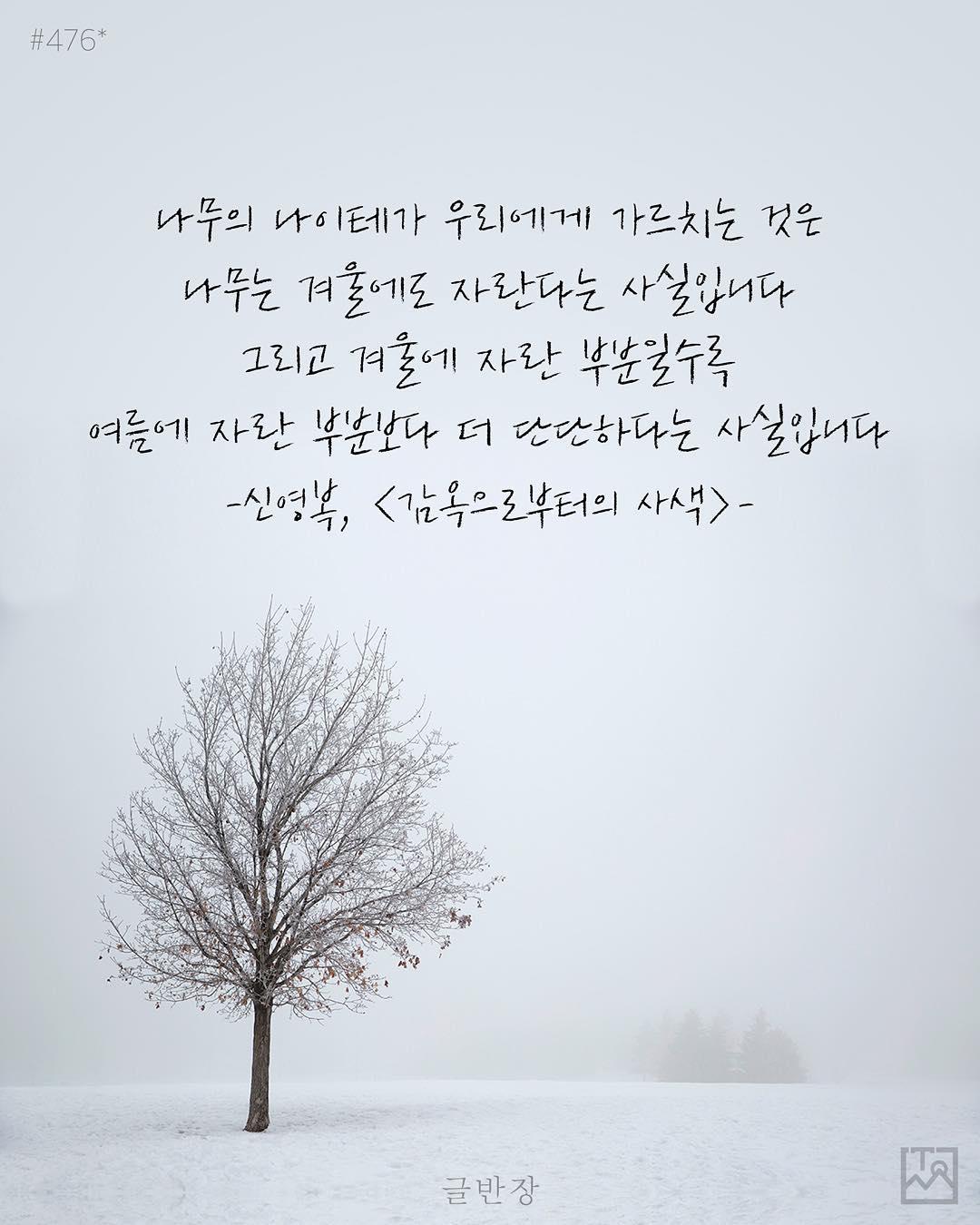 나무는 겨울에도 자란다 - 신영복, <감옥으로부터의 사색>
