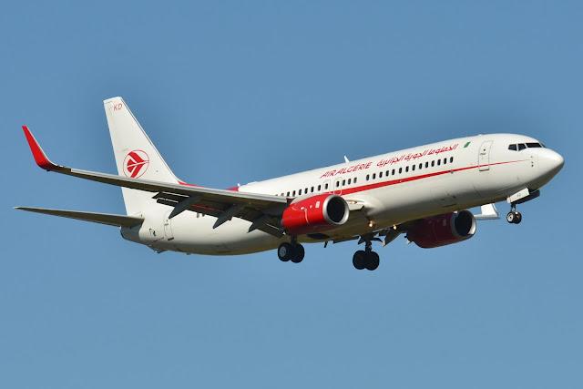 Resultado de imagen de vacaciones en paz saharaui avion tinduf