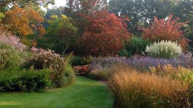 Bordura de otoño en Knoll Gardens