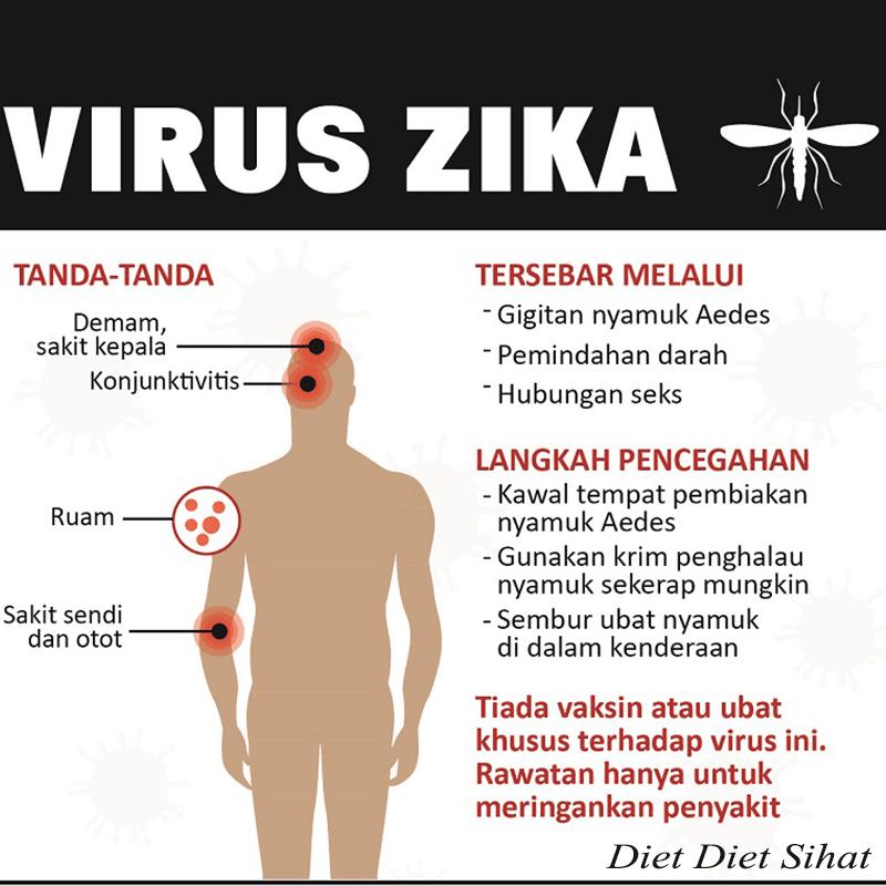 pencegahan virus zika