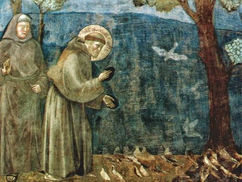 #PraCegoVer: São Francisco Prega para as Aves Giotto.