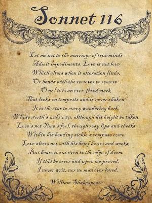 sonnet essay sonnet 116 college essays