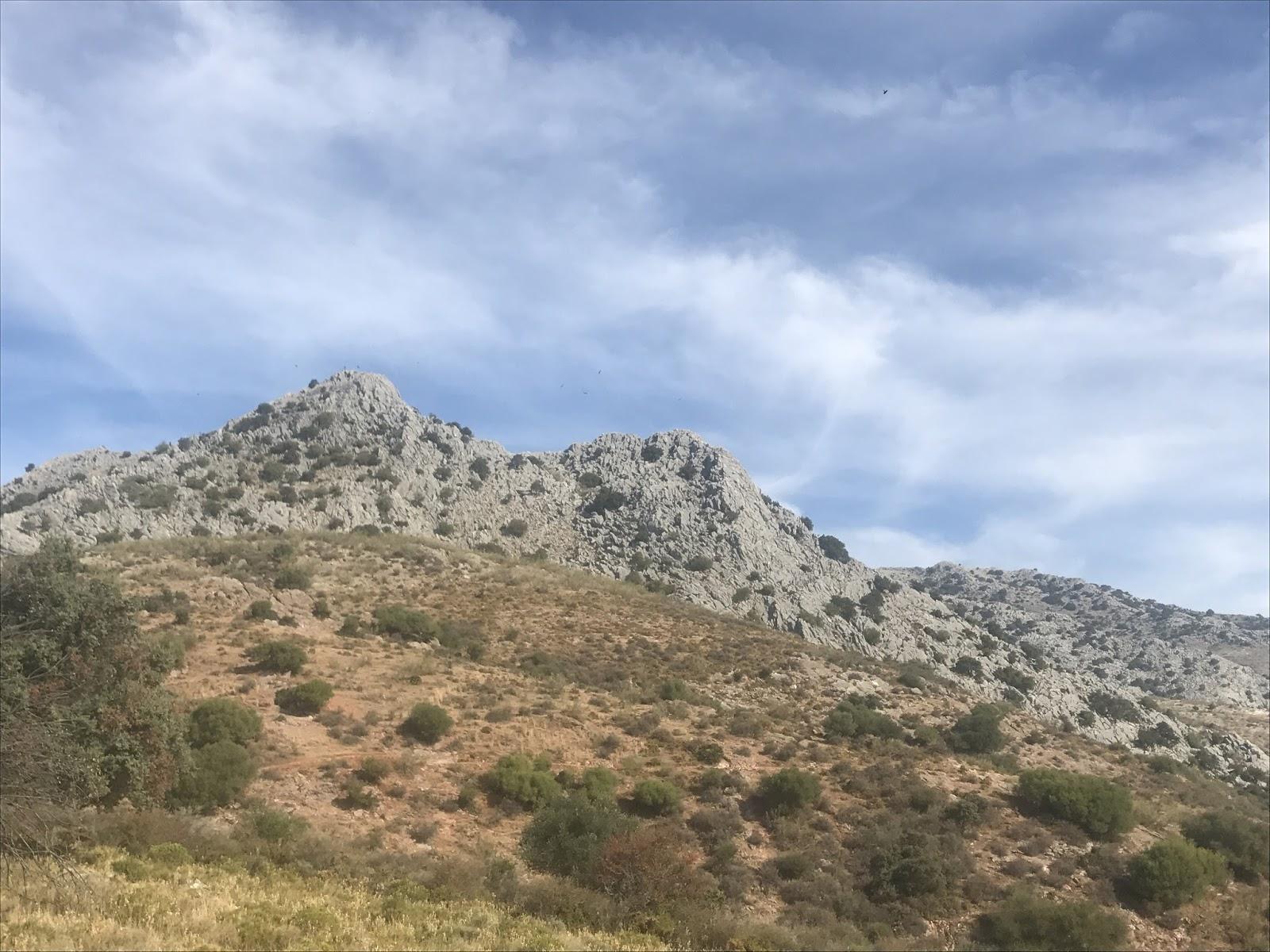 La Mar De Huellas Senderismo Sendero El Pimpollar Y Garganta De La