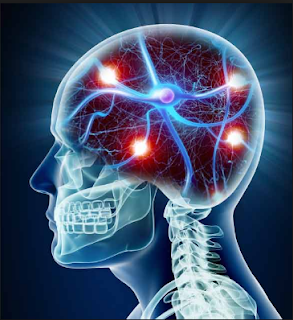 nutrients For The brain – recognize Its importance