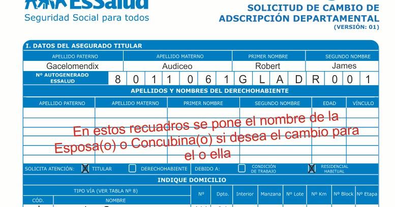 MODELO DE ADSCRIPCION DEPARTAMENTAL PARA LIMA - TRAMITES Y ...