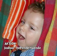 http://ein-kleiner-blog.blogspot.de/2014/09/ice-bucket-challenge-joshua-helfende.html