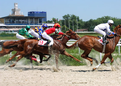 Free Speculative Racing Tips
