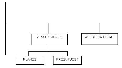 Cuales son los órganos de asesoría-el organigrama