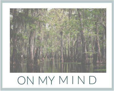 On My Mind ♥ KitchenParade.com, a road trip across Louisiana