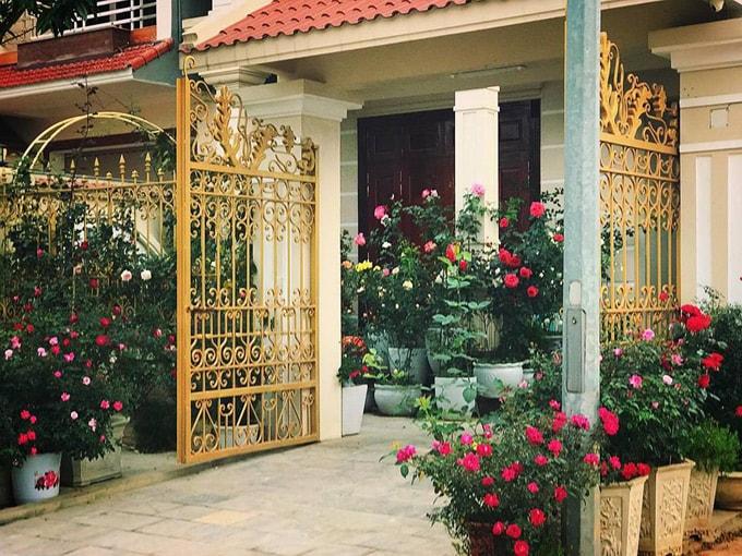 Sân vườn 50 m2 phủ kín hoa hồng của bà mẹ Hòa Bình -3