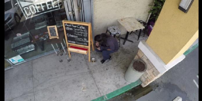 Η ιδιοκτήτρια έβαλε κρυφή κάμερα, επειδή… «τελείωνε» γρήγορα η σκυλοτροφή! Αυτό που είδε την σόκαρε! (ΒΙΝΤΕΟ)
