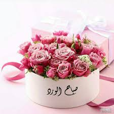 مساء الورد والياسمين , عبارات مساء الورد والفل والياسمين مكتوبة علي صور مسائية