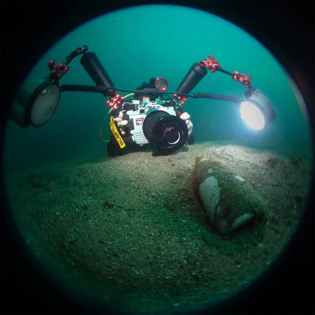Scuba Diving, Underwater Photography, Anilao, Jun v Lao