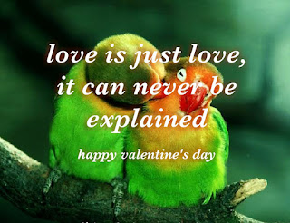 happy valentine day 2019 status on greetings cards hd wallpapers
