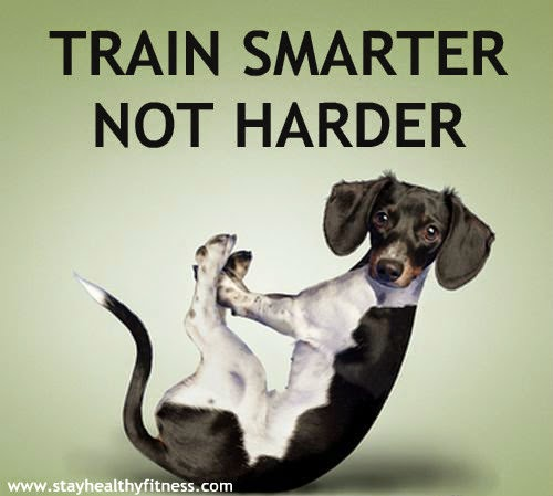 The Best Trainer Training Solution is not Harder
