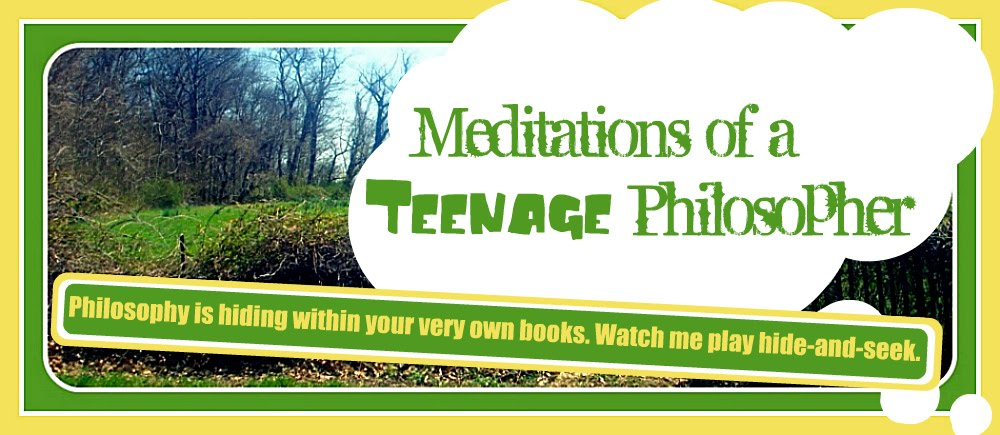 Meditations of a Teenage Philosopher