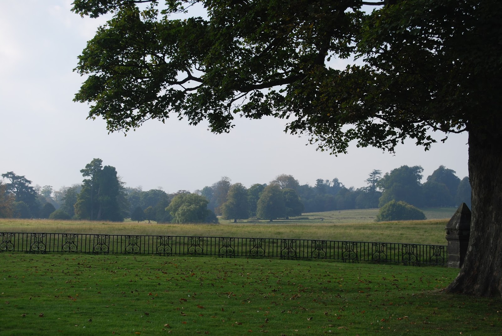The Ha Ha by Capability Brown, Petworth House, photo by Modern Bric a Brac