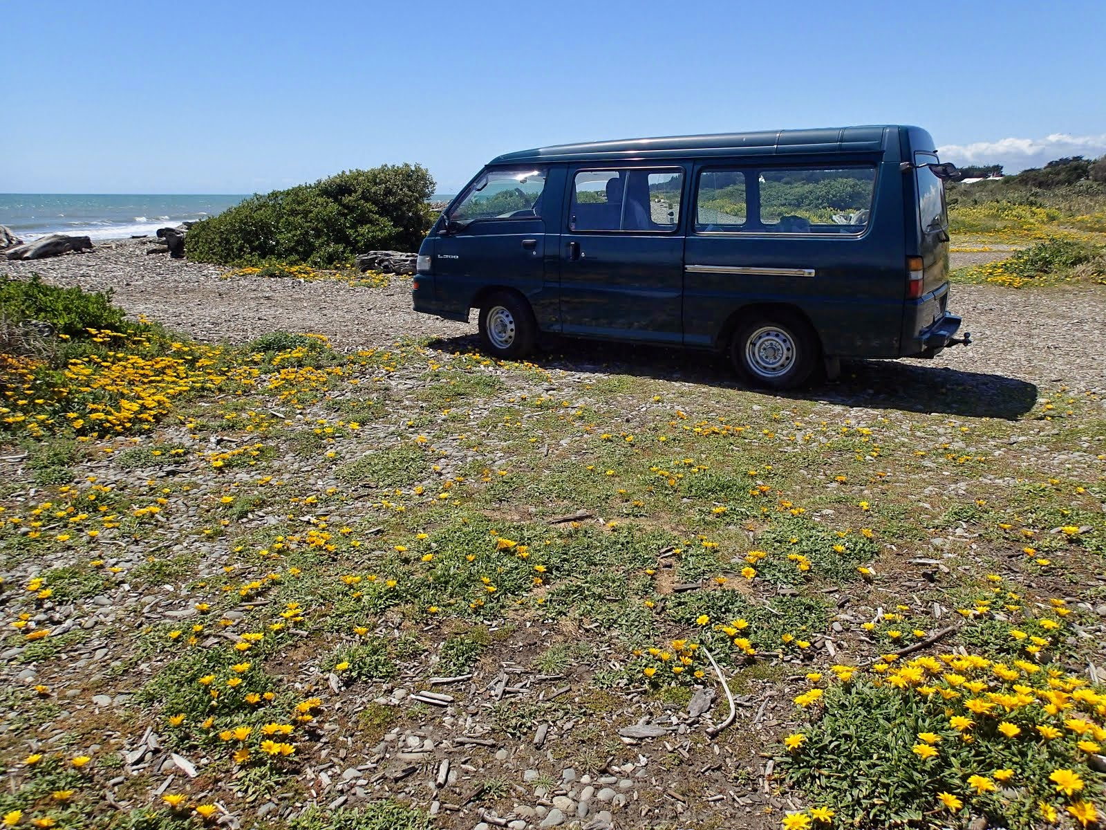 Van with daisies, looking north at Te Horo beach