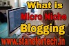 What is micro-niche blogging ? 2019 Best micro niche blogging topics
