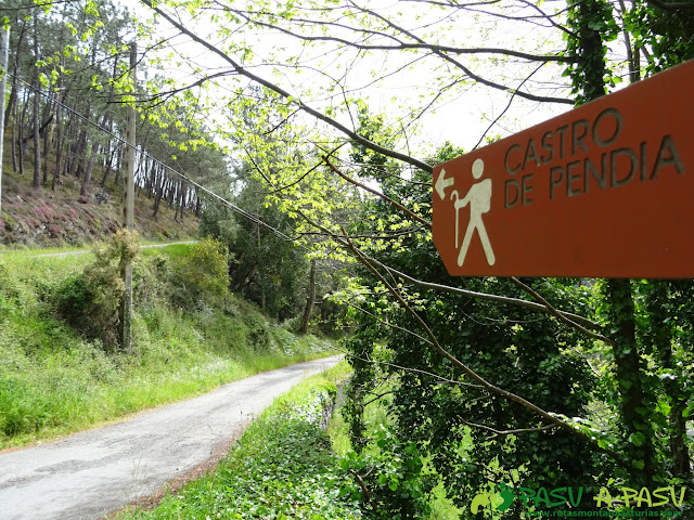 Ruta de los Castros: De Hervededo a Pendia